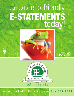 Graphic for eco-friendly e-statements. Contains a picture of a colorful tree frog and an encouragement to sign up for e-statments.